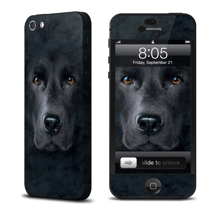 Lab iPhone 5 Skin