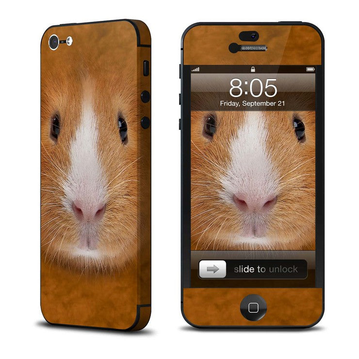 Guinea Pig iPhone 5 Skin