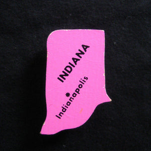 Indiana State Magnet Pink
