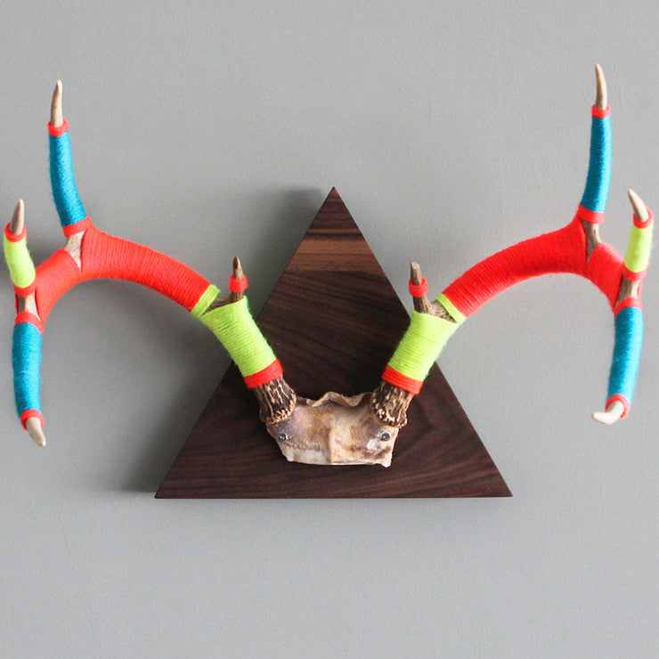 Large Walnut 8 Point Antler II