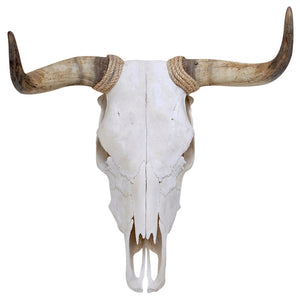 Fighting Bull Skull Decal