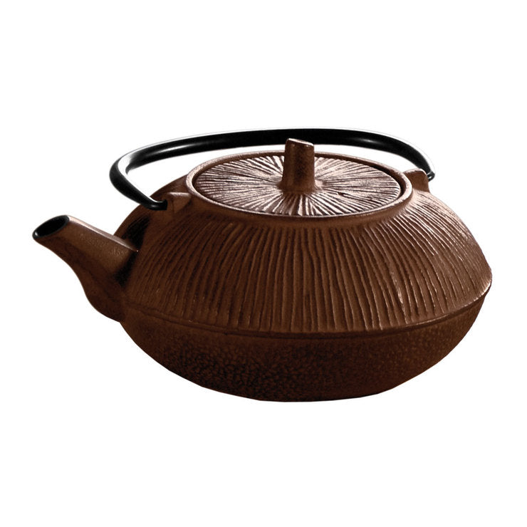 Cast Iron Teapot 28oz Brown