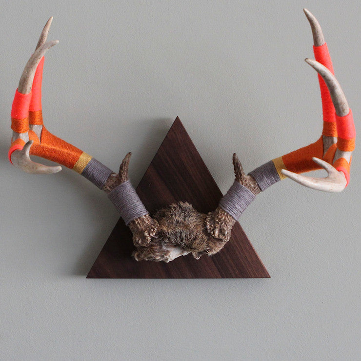 Lg 10 Pt Antler On 10\ Walnut""