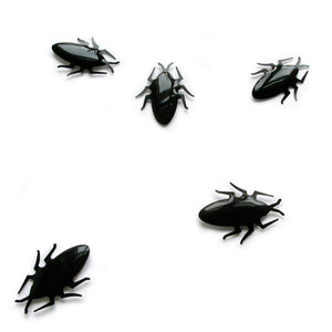 Cockroach Magnets