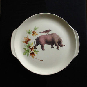 Bird On Rhino Plate White
