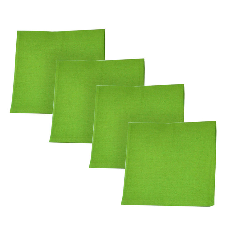 Watermelon Lime Napkin Set Of 4