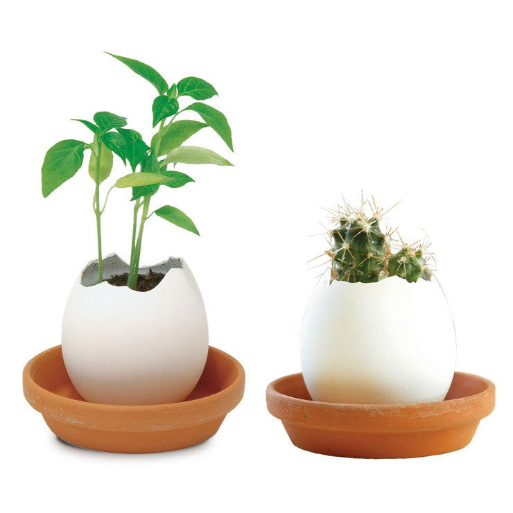 Cactus And Pepper Eggling Set