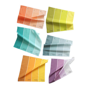 Paint Chip Napkin Multi II 6Pk