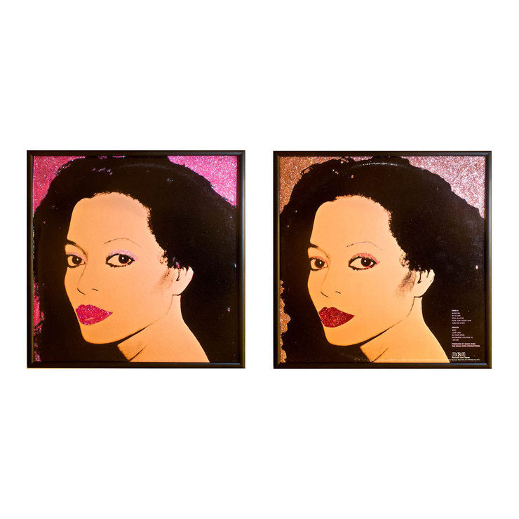 Diana Ross Warhol Installation