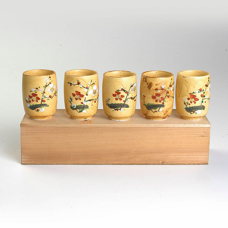 Hand-Painted Cups Set Of 5