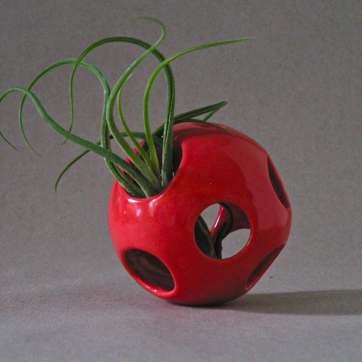 Air Pod Plant Holder Red