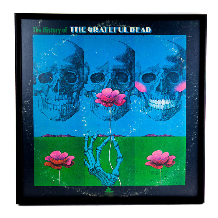 Framed Grateful Dead Album V