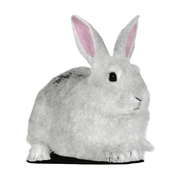 Flat Pet Rabbit