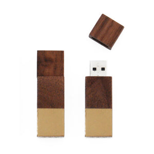 Echo Flash Drive Gold