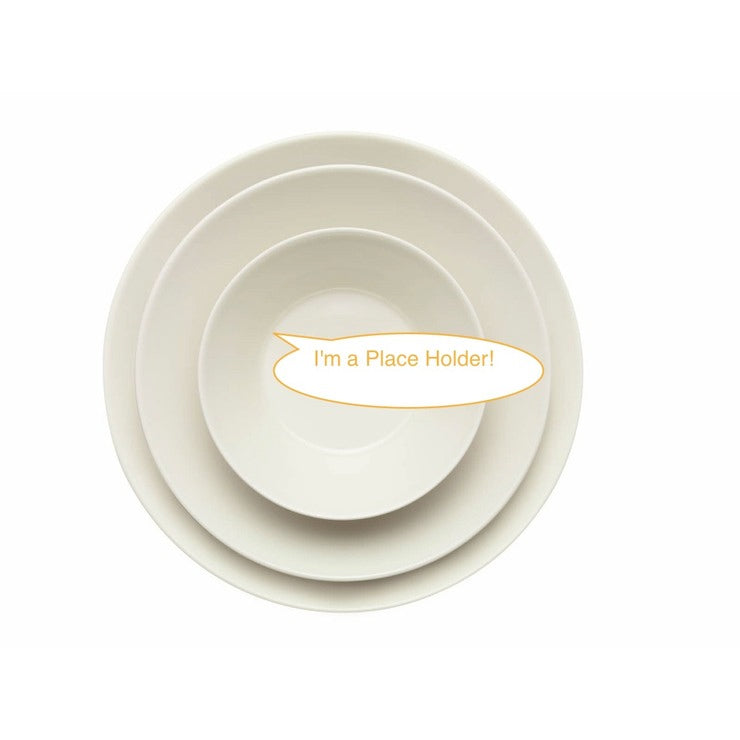 Entertain 365  Appetizer Plate