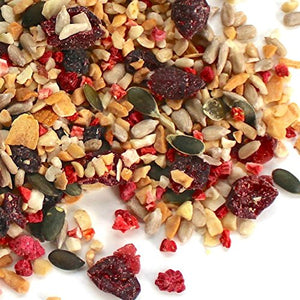 Promix - Berry Burst Trailmix