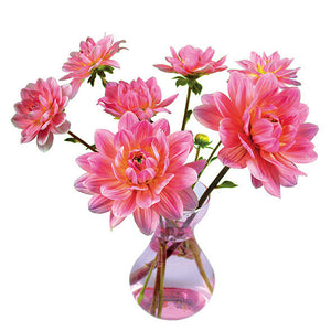 Flowers Decal Dahlia Pink
