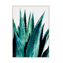 Canvas Wall Decor – Cactus
