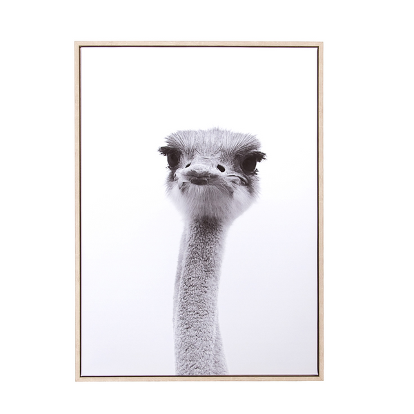 Canvas Wall Decor – Ostrich