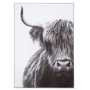 Canvas Wall Decor – Yak