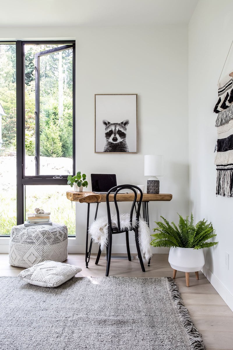 Canvas Wall Decor – Raccoon