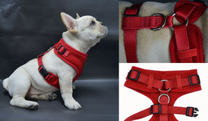 EcoBark Red 3-Pic Comfort-Fit Neck Adjustable Dog Harness