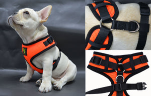 EcoBark Orange 3-Pic Comfort-Fit Neck Adjustable Dog Harness