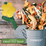 Best Fungus Gnat Trap