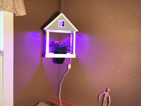 House Planter with LED grow light