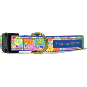 Citrus Dog Collar by Southern Couture