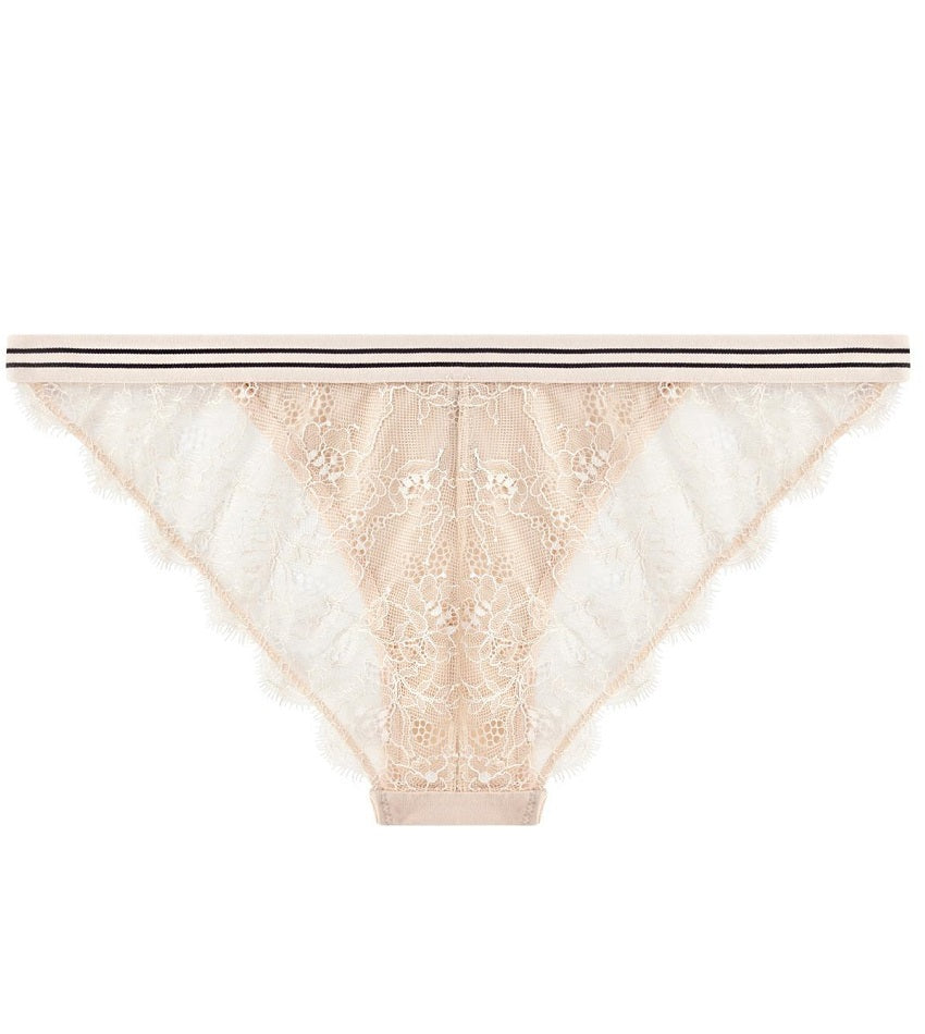 Wild Rose Brief