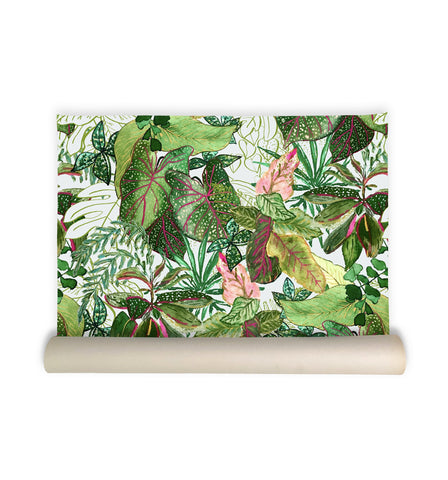 Find happiness with this leafy jungle wallpaper.