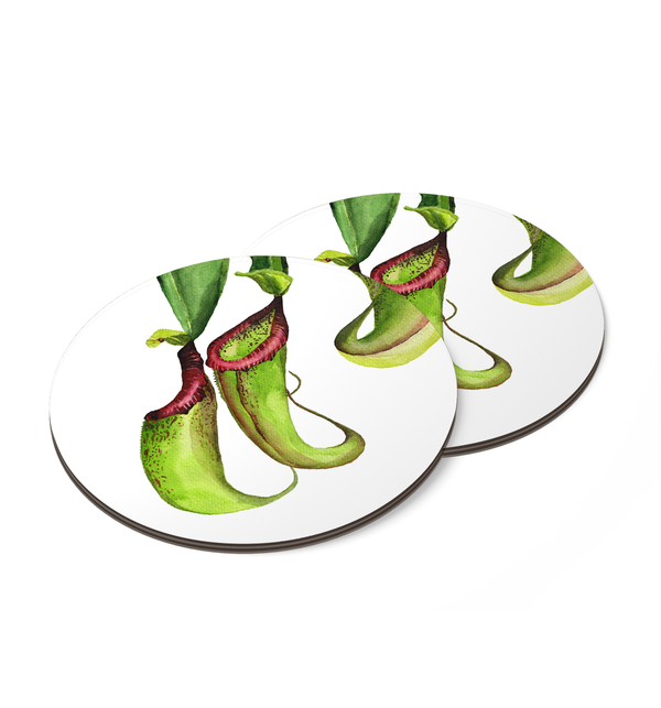 Pitcher Plants Coaster by Fannina Bautista