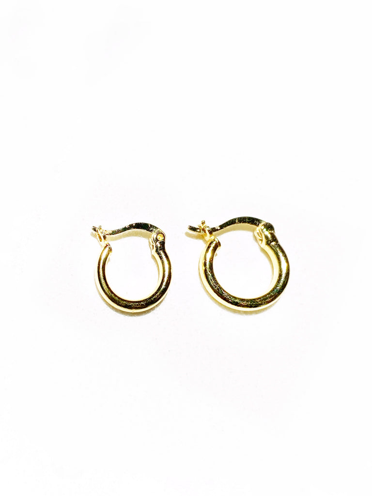 SMALL HINGED HOOPS