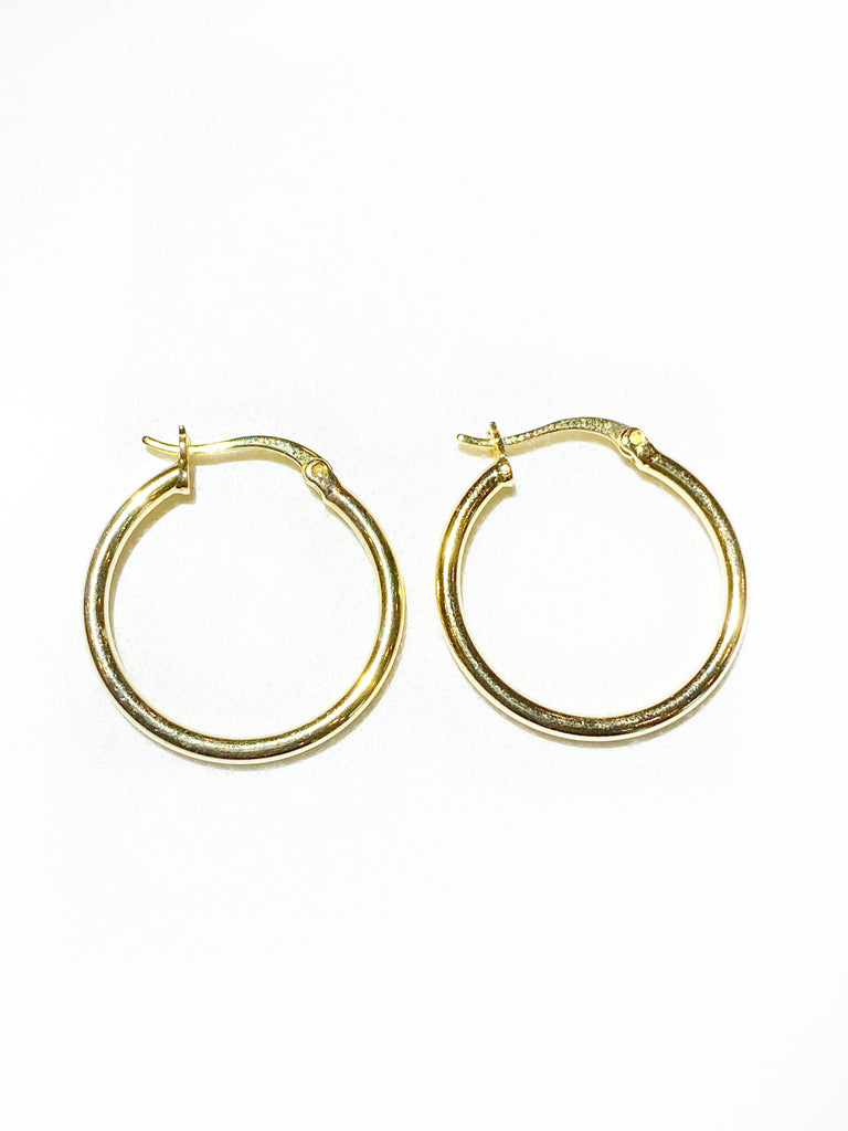 LARGE HINGED HOOPS