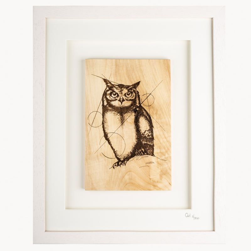Framed Owl - Large