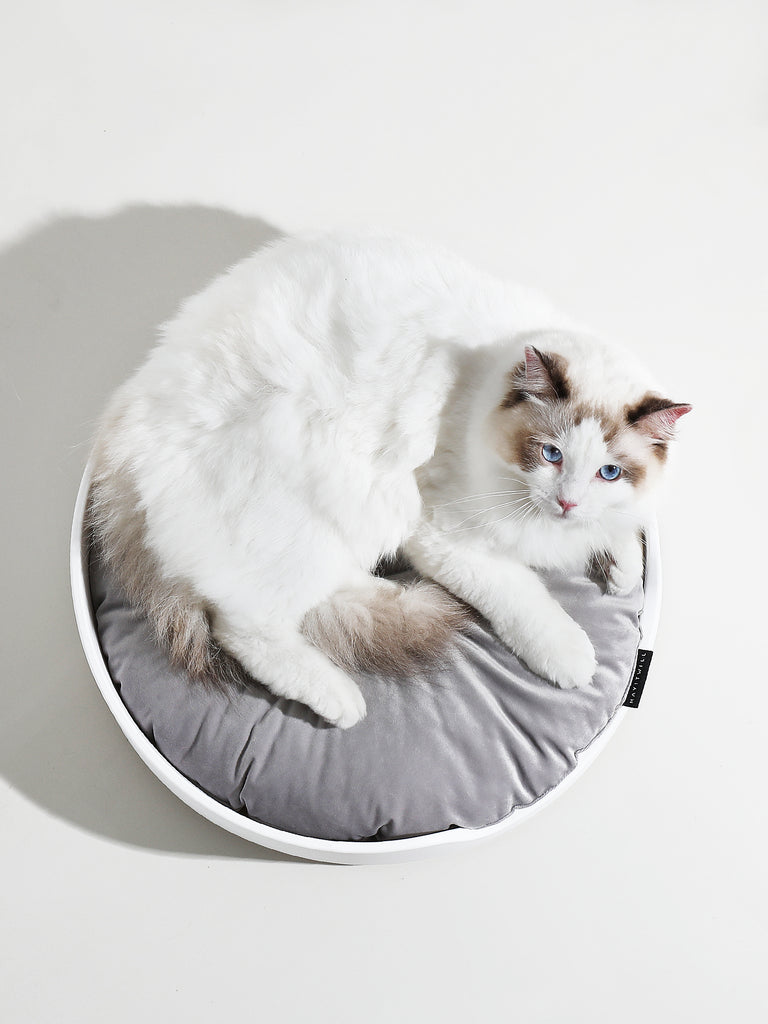 Mayitwill Cat Litter Box Mat