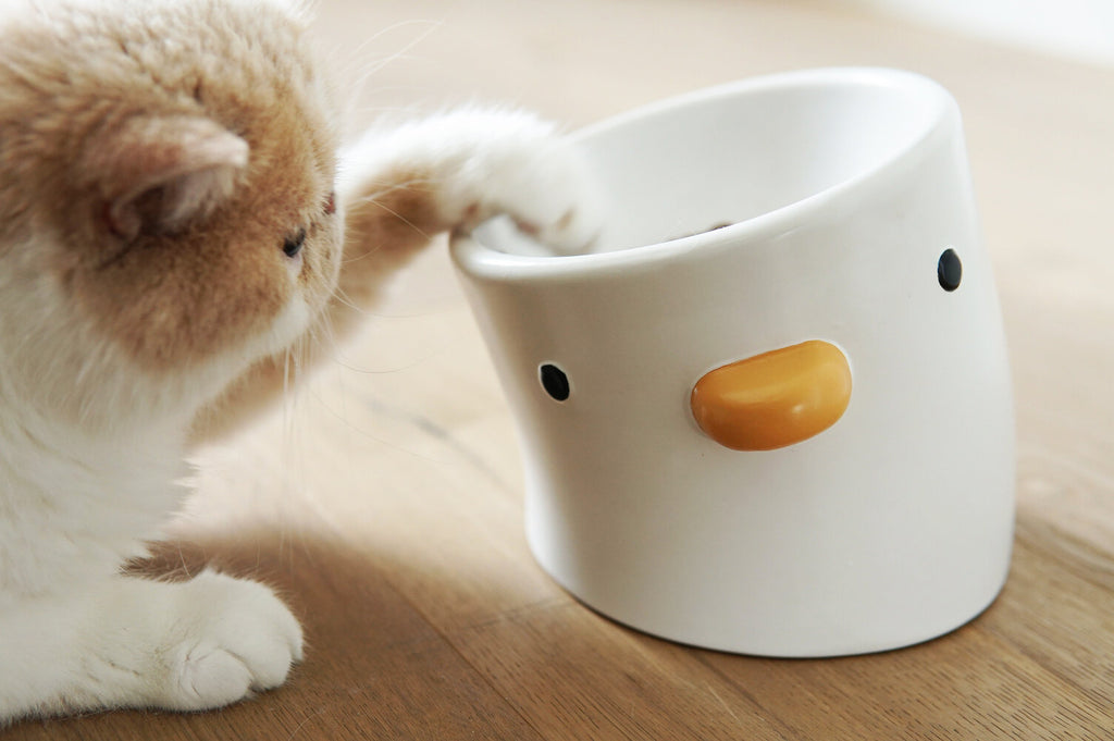 Ceramic Elevated Chick Cat Bowl, 12 Degree Angle