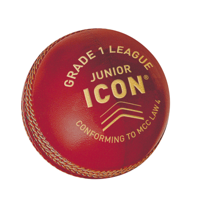 Cricket Ball Icon Grade 1 League - Junior