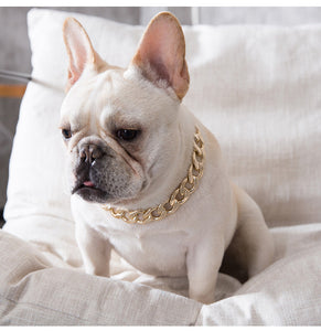 Gold Dog Chain Collar - Thick HypeChainz - HypeDoggo