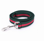 Gucci styled Leash and Collar - HypeDoggo