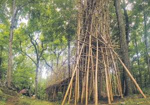 Big Bambú - Private commission, Upstate New York