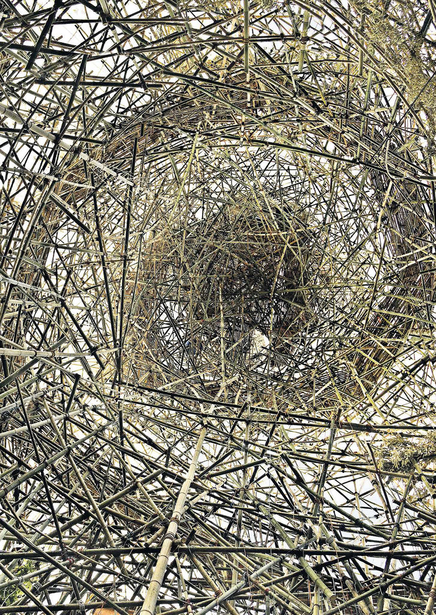 Big Bambú: Official Collateral Exhibition to the 54th Venice Biennale, 2011