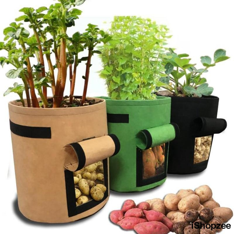 Potato Grow & Harvest Pot - iShopzee