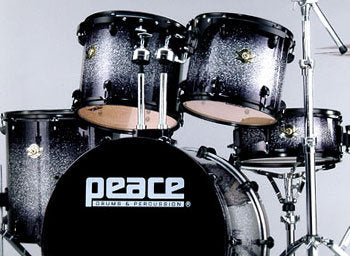 DNA Maple (Ravenplate) Drum Set by Peace