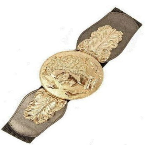 Gold Metal Coin Feather Elastic Wide Belt