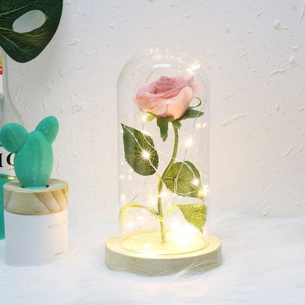 Beauty And The Beast Rose In A Glass Dome - pink - Christmas