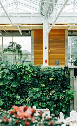 The GREEN guide to a sustainable home