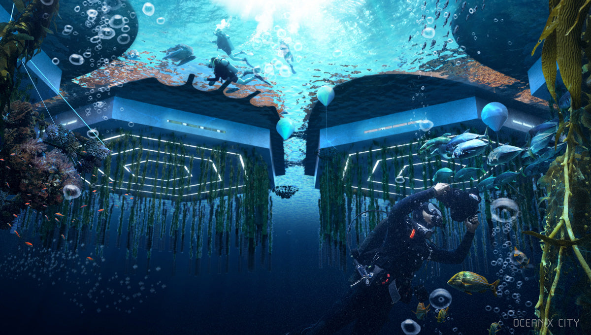 PLATFORMS FROM UNDERWATER: Below sea level, beneath the platforms, biorock floating reefs, seaweed, oysters, mussel, scallop and clam farming clean the water and accelerate ecosystem regeneration.