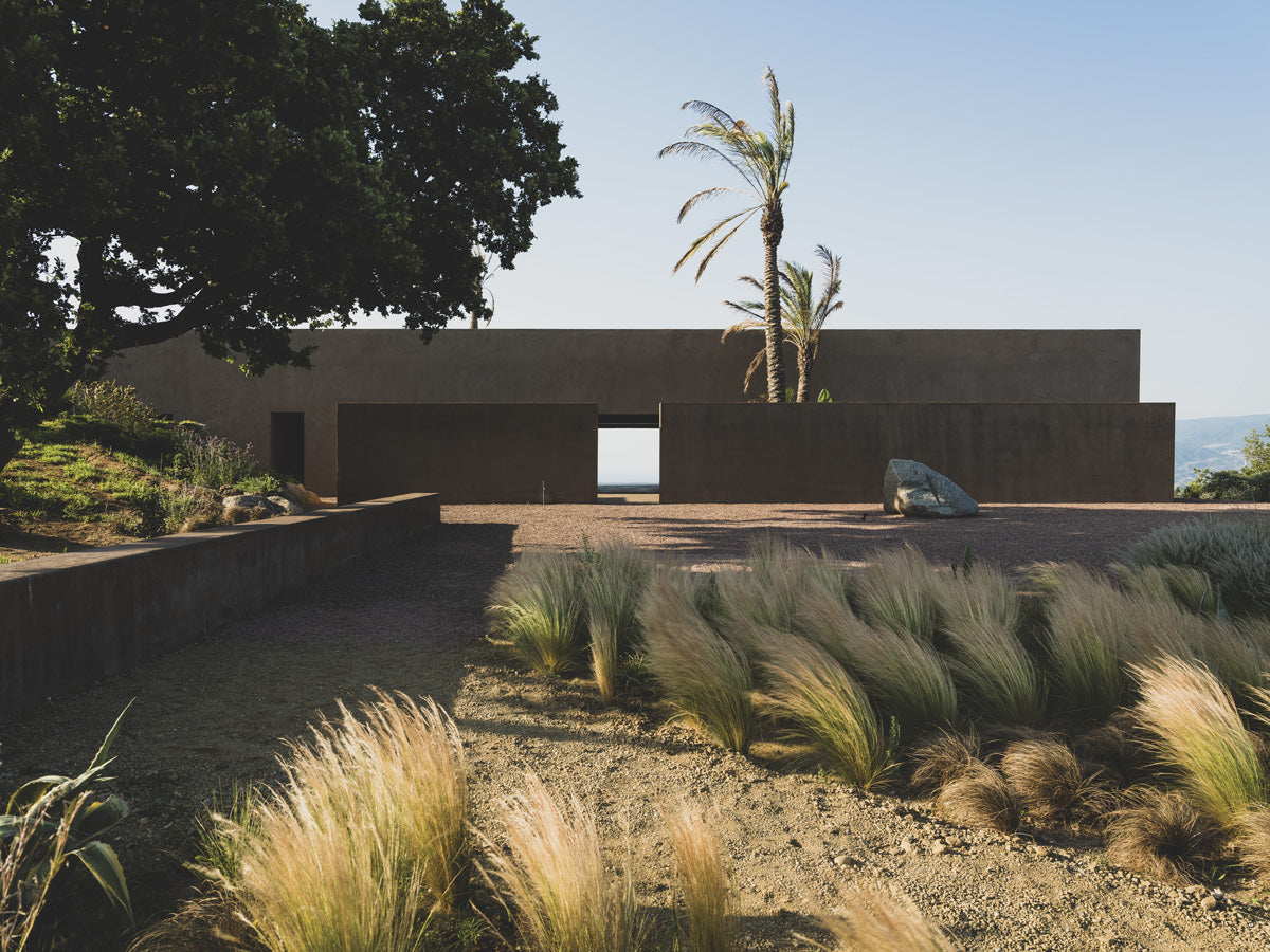The palm trees are part of the place's flora and were used to limit the property, also serving as markers, since the house can be seen from the distance.